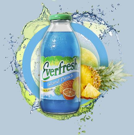 Everfresh Island Punch Juice 16 oz